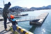 0219真魚市